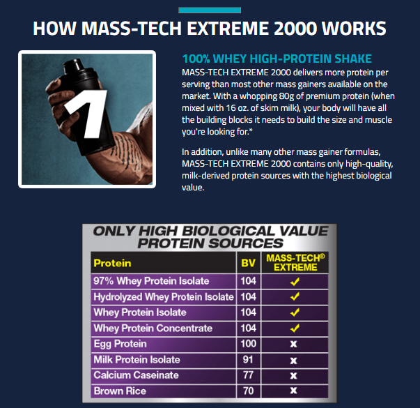 MUSCLETECH MASS TECH EXTREME 2000, TRIPLE CHOCOLATE BROWNIE, 7 LBS 6